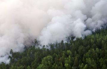 Rusiyada bir gündə 207 hektar ərazidə 16 meşə yanğını aktiv şəkildə söndürülüb