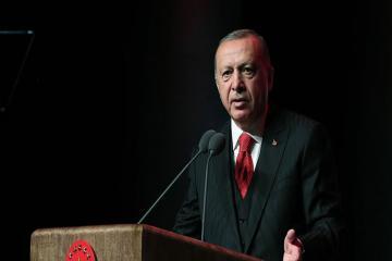 Эрдоган: Мы даем две недели США
