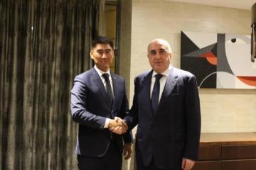Foreign Minister Elmar Mammadyarov met with the Kyrgyz Foreign Minister Chingiz Aydarbekov
