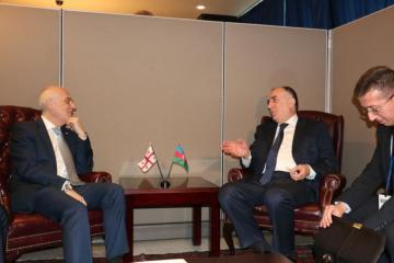 Azerbaijan, Georgia FMs express their interest in the soonest finalization of the delimitation of the state border