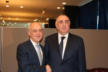 Главы МИД заинтересованы в скорейшем завершении делимитации азербайджано-грузинской границы
