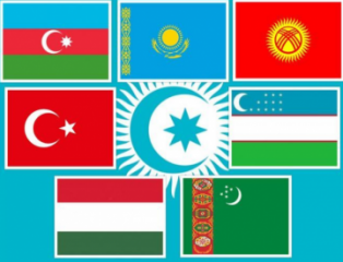 Extraordinary Summit of Turkic Council held through videoconferencing - [color=red]UPDATED-1[/color]