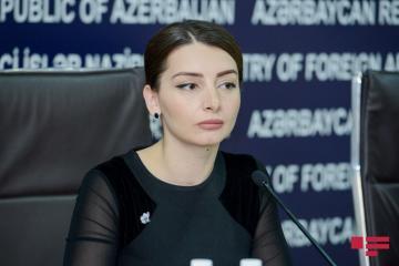 Лейла Абдуллаева прокомментировала высказывания главы МИД Армении