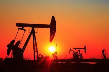 Nazirlik: Bu il neftin orta qiyməti 30 dollardan çox olacaq
