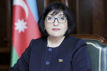 Sahiba Gafarova elected as head of the Azerbaijani delegation to the TurkPA