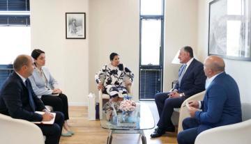 Georgian President receives Azerbaijani Ambassador