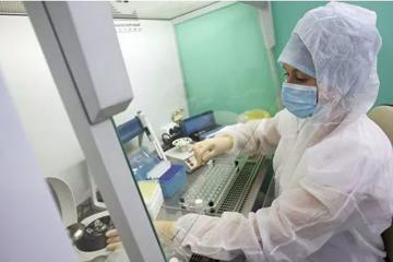 ВОЗ обнаружила мутацию коронавируса в Дании, Нидерландах и Австралии