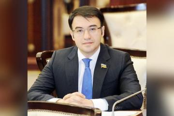 Депутат: Детям офицеров, ставших шехидами, будет выплачиваться ежемесячная стипендия в размере 400-500 манатов