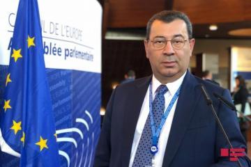 Самед Сеидов: При налаживании отношений с СЕ мы должны серьезно мыслить в рамках национальных интересов
