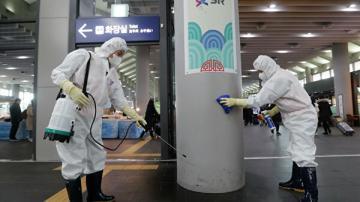 Южная Корея подтвердила 29-й случай заражения коронавирусом