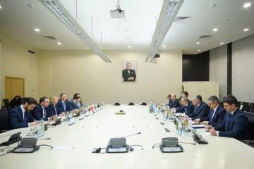 Азербайджан и Грузия реализуют новый проект на Черном море