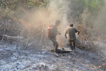 В Агстафе предотвращено возгорание лесополосы
