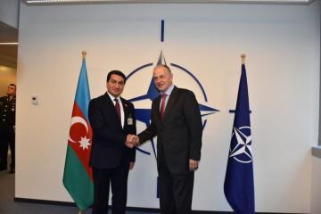 Azerbaijani President's Aide meets NATO Deputy Secretary General
