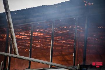 Fires killed 53, injured 232 people in Azerbaijan last year