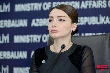 Лейла Абдуллаева: Такого рода шаги руководства Армении служат усилению оккупации