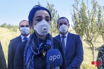 Ombudsman: Armenia flagrantly violates the Geneva Convention by shelling civilians