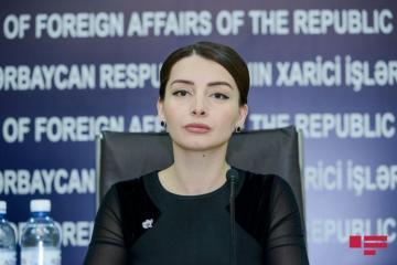 Лейла Абдуллаева прокомментировала совместное заявление членов Европарламента