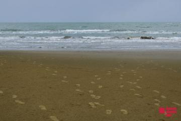 Будет запрещено посещение пляжей в регионах, где введен ужесточенный карантинный режим
