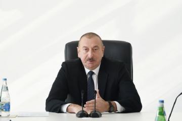 Azərbaycan Prezidenti apteklərdə maska çatışmazlığının müşahidə olunması barədə danışıb