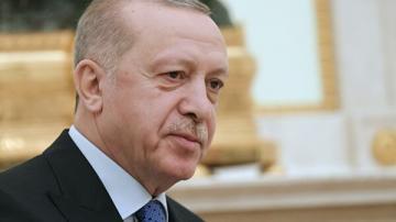 Эрдоган: Турция не намерена аннексировать сирийскую территорию