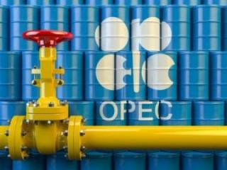 OPEC+ countries start largest reduction of oil production in history