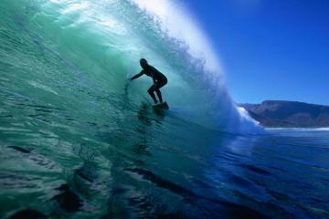 ABŞ-da sörfinqçi köpəkbalığının hücumu nəticəsində ölüb