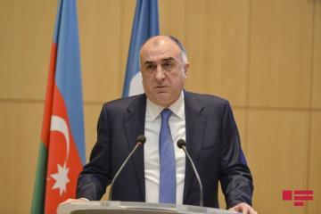 Глава МИД Азербайджана: Около 20 тысяч граждан возвращены в страну