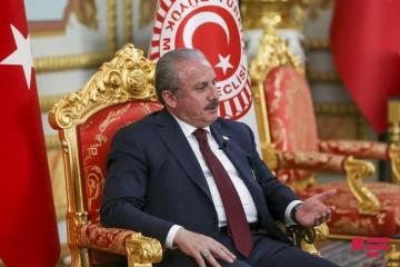"""Speaker of Turkish Parliament: """"We will stand by Azerbaijan in it's just struggle and defense of the homeland"""""""