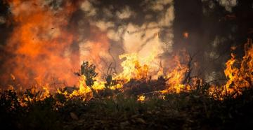 KİV: Meşə yanğını ABŞ Silahlı Qüvvələrinin Koloradodakı hərbi bazasının ərazisinə keçib