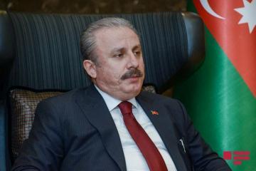 Председатель турецкого парламента выступил в Милли Меджлисе - [color=red]ОБНОВЛЕНО-1[/color]