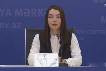 "Leyla Abdullayeva: ""Azerbaijani Army conducts counter-offensive operations in accordance with the existing norms and principles of humanitarian law"""