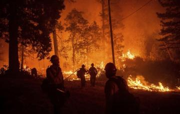 Kaliforniyada meşə yanğınları 3959 evi yararsız hala salıb, 14 nəfər tüstüdən zəhərlənib