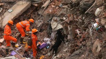 При обрушении жилого дома в Индии погибли 8 человек, еще 25 могут находиться под завалами
