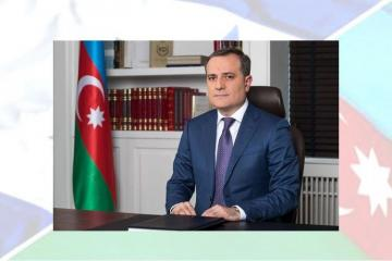 Azerbaijani FM: Partnership with Israel is strong, multidimensional
