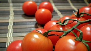 Минсельхоз РФ предложил увеличить квоту на ввоз томатов из Турции
