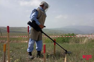 ANAMA: Ermənilər Suqovuşanda daha çox aşkarlanması çətin olan plastik minalar basdırıb - [color=red]VİDEO[/color]