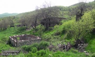 Zəngilanın Nəcəflər kəndi - [color=red]VİDEO[/color]