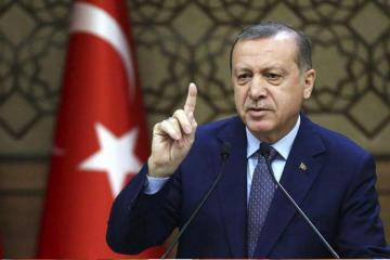 Эрдоган: Есть подозрение на террор в пожарах