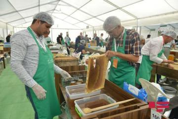В Баку в марте может пройти ярмарка меда