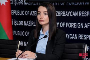 Лейла Абдуллаева прокомментировала угрозы армянских радикальных сил в адрес посла Азербайджана в США