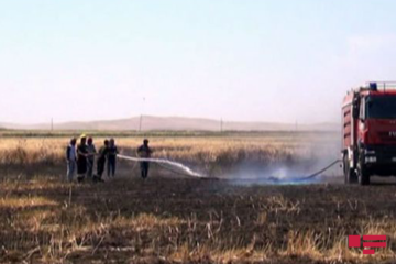 MES disseminated information on fire occurred in border line in Gazakh