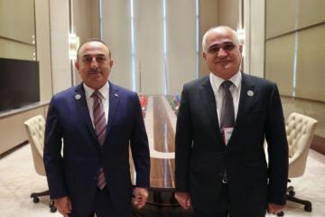 Turkish FM meets with Azerbaijani deputy PM