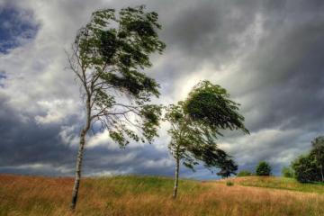 Завтра будет ветрено