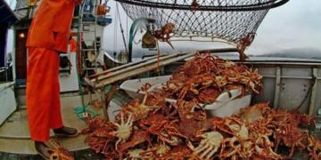 Россия выразила Японии протест из-за инцидента с рыболовным судном у Сахалина