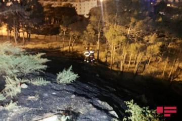 МЧС: Оперативно потушены пожары в ряде городов и районов Азербайджана