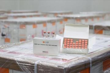 Число вакцинированных от коронавируса в Азербайджане достигло 407 979