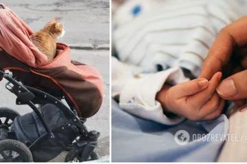 Ukraynada pişik 4 aylıq körpənin ölümünə səbəb olub
