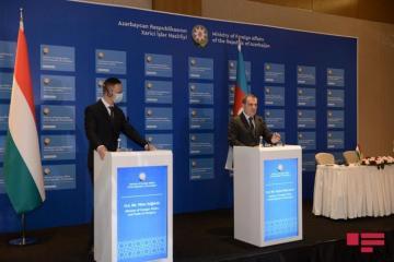 Министр: Будут предприняты шаги для возобновления рейсов Wizz Air в Азербайджан