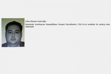 Объявленный в международный розыск глава азербайджанской компании задержан в Турции