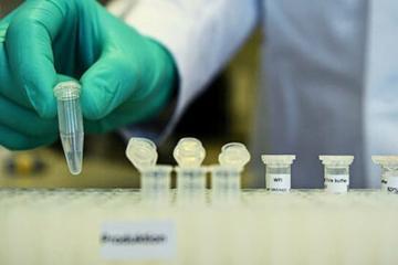 В Германии за сутки выявили более 16 тысяч случаев COVID-19